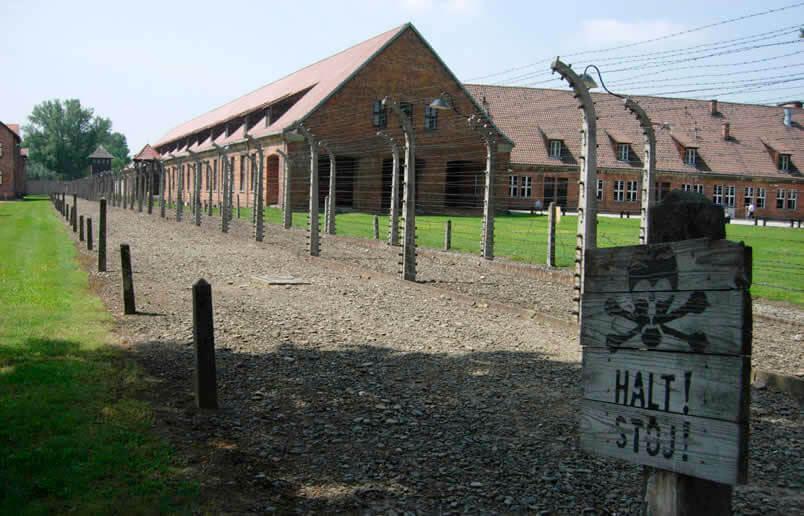 Curiosidades sobre Auschwitz