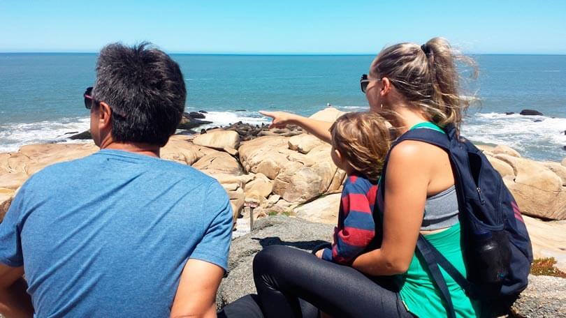 Vendo Lobos Marinhos - Cabo Polonio