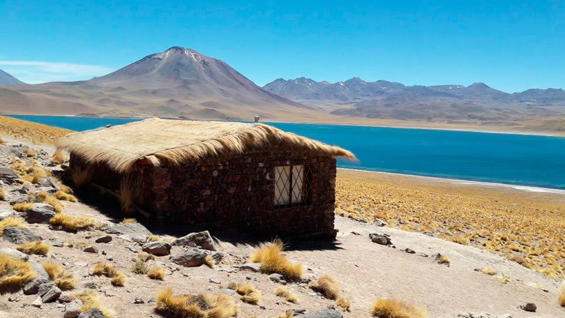 Passeio Lagunas Altiplânicas - Deserto do Atacama memorável