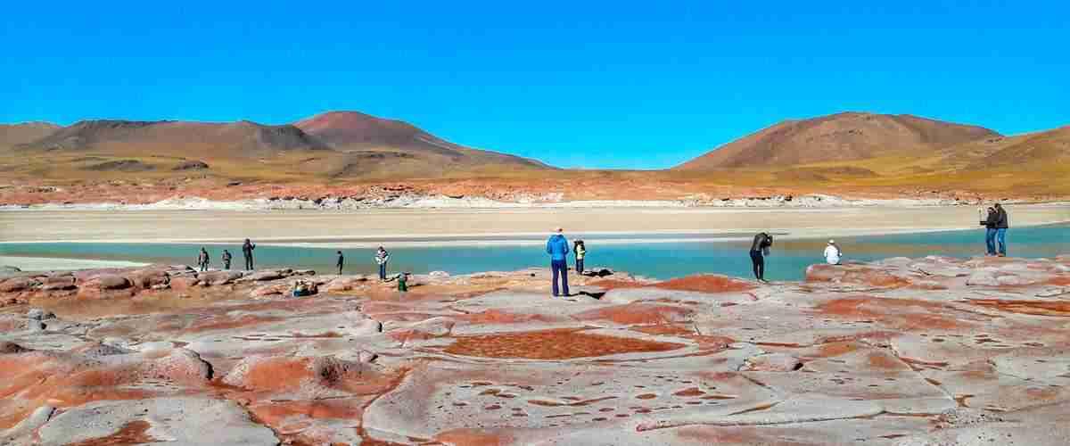 Passeio pelas Lagunas Altiplânicas e Piedras Rojas em San Pedro de Atacama