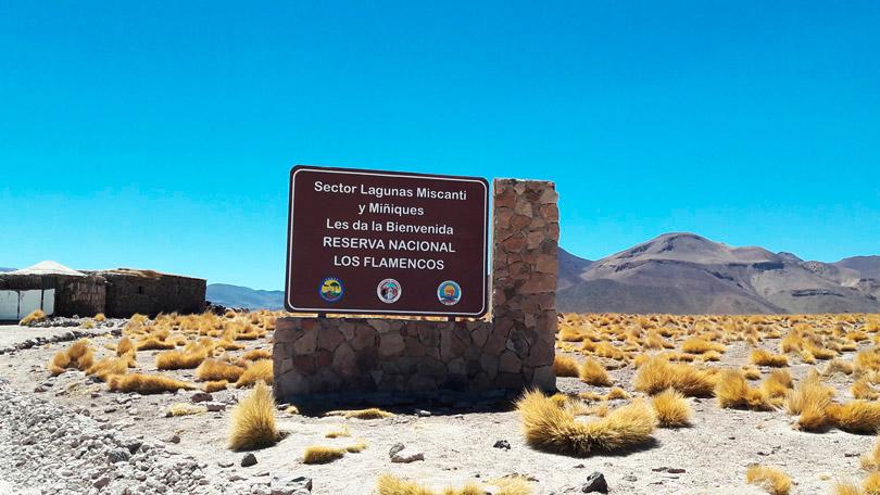 Lagunas Altiplânicasna Reserva Nacional Los Flamencos