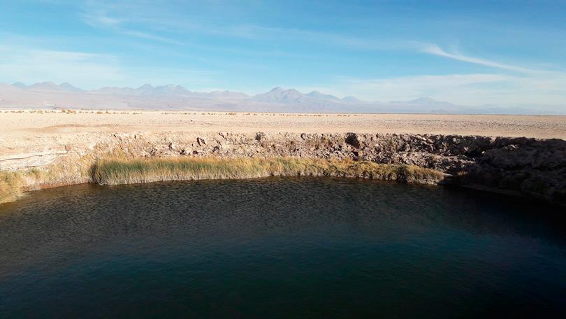 Um passeio em Ojos de Salar, Atacama Laguna Cejar