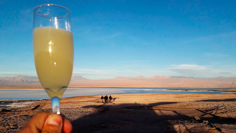 Pisco Sour, Atacama Laguna Cejar